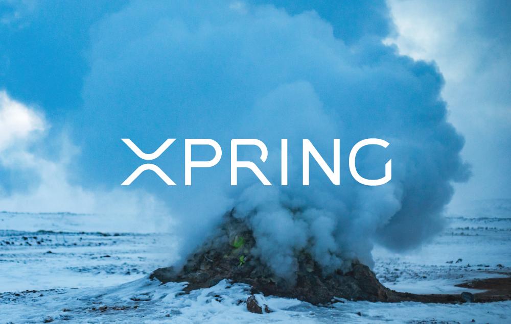 xpring : investissement dans les projets Blockchain qui utilisent le Ripple