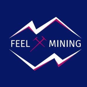 Feel-mining : masternode, minage, cloud, hébergement